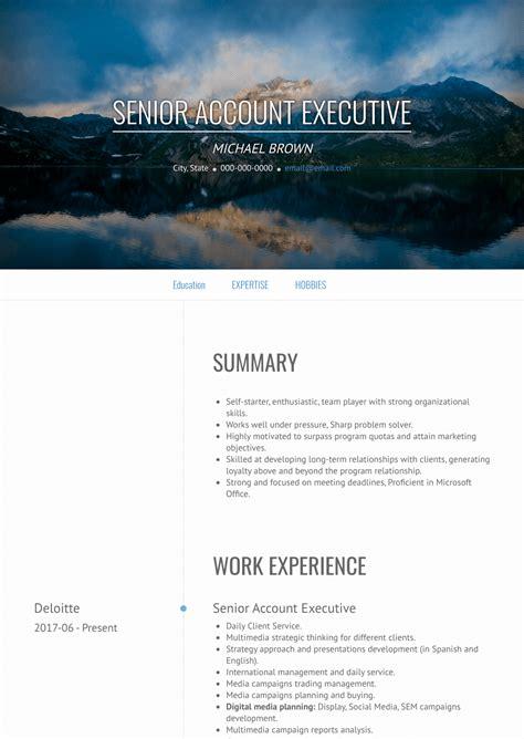 accounts executive resume samples  templates visualcv