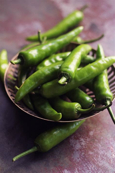 green chili pepper indian fresh green chili peppers a deguster avec les yeux ingr 233 di
