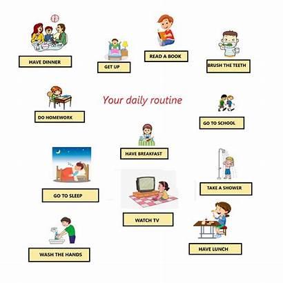 Daily Routine Routines Worksheet Pdf Exercise Exercises