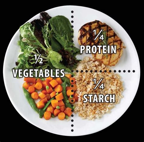 portion pates 1 personne 1000 ideas about portion plate on portion plate portion and