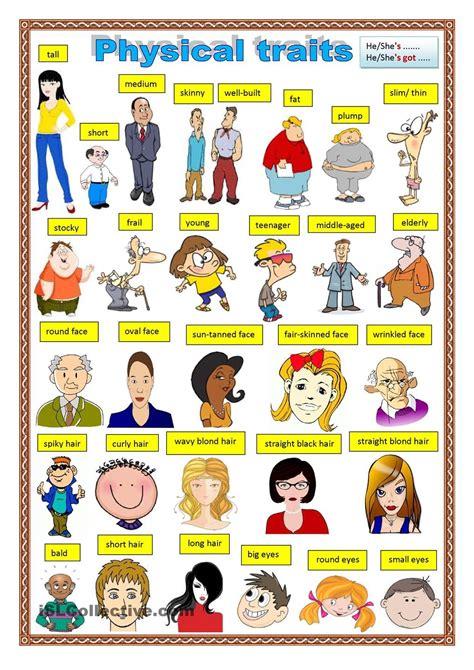 physical description words to describe