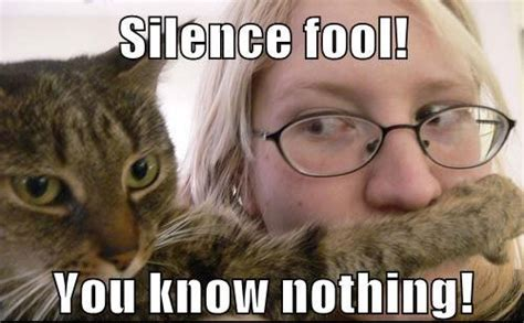 silence fool    funny lover