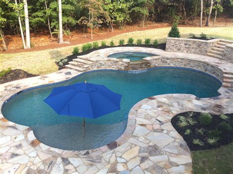 backyard oasis pools free form pool roswell