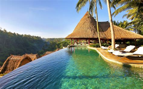 nature landscape swimming pool palm trees resort