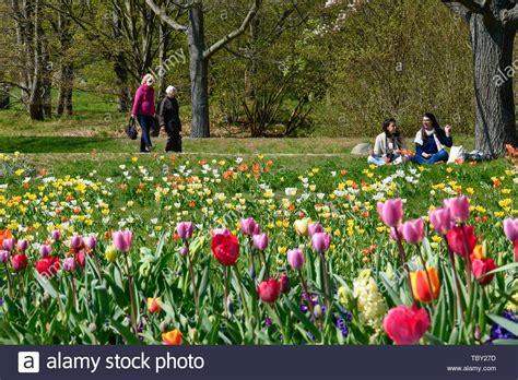 Britzer Garten Milchbar by Parkgelaende Stock Photos Parkgelaende Stock Images Alamy