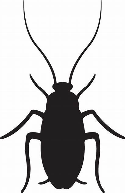 Cockroach Roach Clipart Clip Cockroaches Dezeen Cliparts