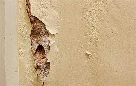comment traiter le salpetre sur un mur interieur comment isoler un mur humide