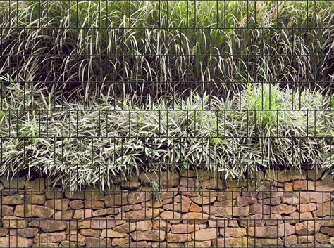 Sichtschutz Garten Ohne Zaun by Steinmauer Doppelstabmatten Sichtschutzstreifen Ohne Pvc
