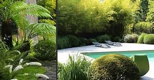 terrasse piscine jardin exotique accueil design et mobilier With mobilier de piscine design 1 exotique paysage
