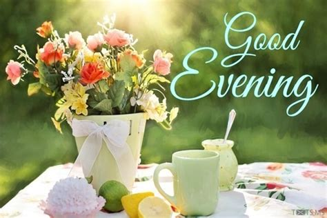 good evening sms wishes quotes images  facebook whatsapp picture sms txtsms
