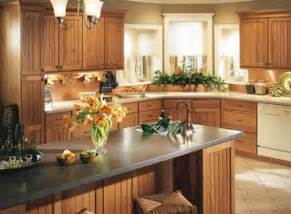 ideas for refinishing kitchen cabinets the paint ideas kitchen cupboards for your home my kitchen interior mykitcheninterior