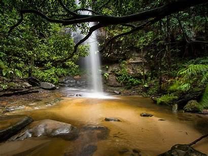 Jungle Deep Australia Waterfall Desktop Falls South