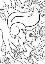 Coloring Squirrel Tree Pages Rainy Stuff Fun Smiles Bunch Stands Oak Cartoon Animals Shutterstock sketch template