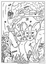 Kleurplaten Bos Het Dieren Kleurplaat Kinderen Voor Artikel Coloring Gnome Animals sketch template