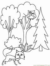 Coloring Pages Trees Tree Fall Pine Forest Printable Print Flower Popular Flowers Da Advertisement Coloringhome sketch template