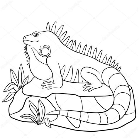 Coloring Iguana by Iguana Coloring Pages To And Print For Free
