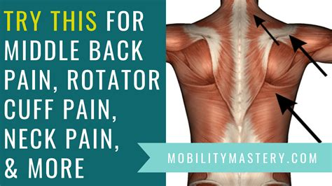 Middle back pain, rotator cuff pain, neck pain, golfer's ...