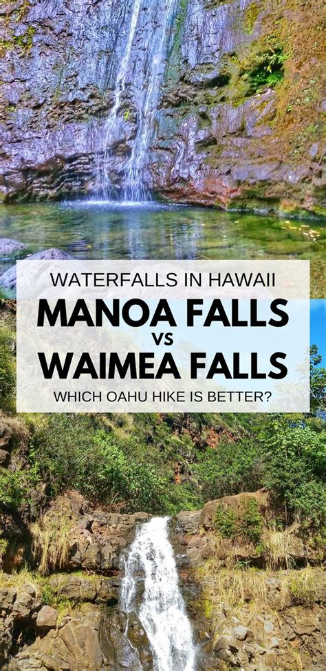 Manoa Falls Vs Waimea Falls Which Is The Best Oahu
