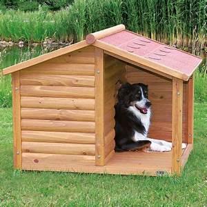 Hundehütte Mit Terrasse : hundeh tte blockhaus natura mit terrasse g nstig bei zooplus ~ Watch28wear.com Haus und Dekorationen
