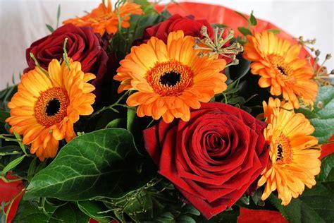 Foto Blumenstrauß Kostenlos by Kostenloses Foto Blume Blumenstrau 223 Strau 223 Rot