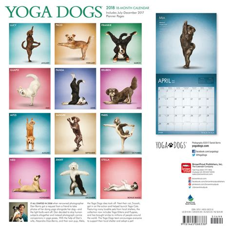 yoga dogs calendars ukpostersabposterscom