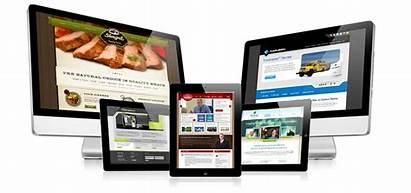 Websites Website Professional