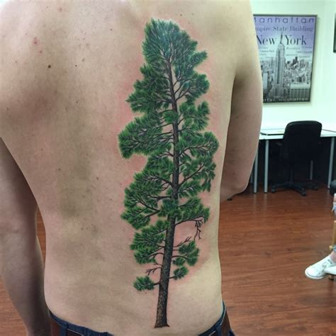 pine tree tattoos designs ideas  meaning tattoos