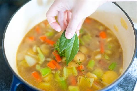 veggie soup recipe basic vegetable soup recipe www pixshark com images galleries with a bite