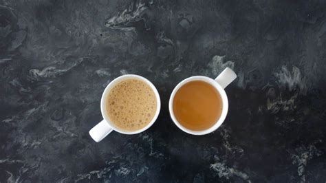 Both tea and coffee can boost your energy levels, but they contain varying amounts of caffeine and antioxidants. Green Tea Vs. Coffee: Which is Right for You? | FreshCap Mushrooms