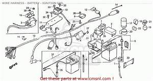 Honda Z50jz Monkey General Export Kph Wire Harness