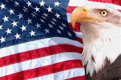 Eagle Flag American Background