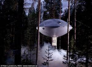 View Interior Of Homes Now That 39 S A Tree House Startling Pictures Of Homes In The Canopies As Enthusiasts Take