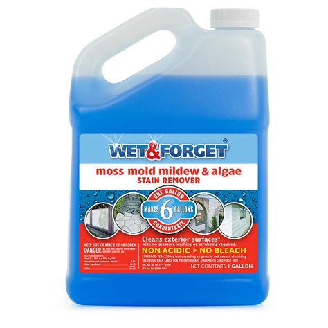 wet forget  gal moss mold mildew  algae stain