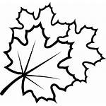 Leaves Svg Icon Onlinewebfonts