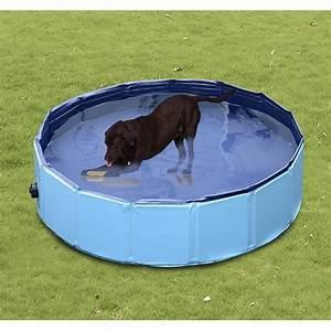 Bassin En Plastique : bassin piscine baignoire pour chien pliable anti glissant ~ Premium-room.com Idées de Décoration