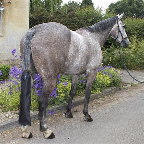 tail horse bag waterproof roll enlarge hoods