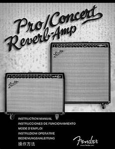 Fender Pr 450 Instruction Manual Pdf Download