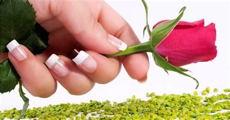 rose rosa hd gulab lady unghia ongles roses ka phool unghie wasima passione wallpapers chiodo hand mano poemas quarto beleza
