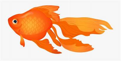 Goldfish Clipart Vector Fish