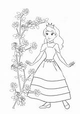 Princess Coloring Pages Rose Bush Pirate Clipartqueen Clip Cool Drawings sketch template