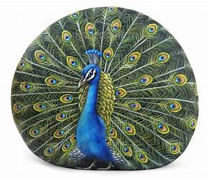 Hand Painted Stone Peacock Fine Art on Rocks by Roberto