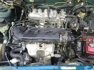 1996 Nissan Sentra Engine Diagram Wiring Diagram Post Helloo Wiring Diagram