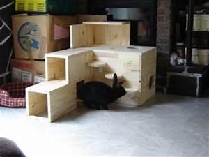 Maison Pour Lapin : construire une cabane pour son lapin marguerite et cie ~ Premium-room.com Idées de Décoration