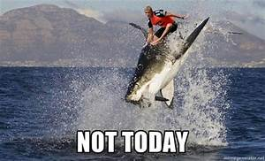 Mick's Shark Attack Memes: The Web Finds the Funny Side ...