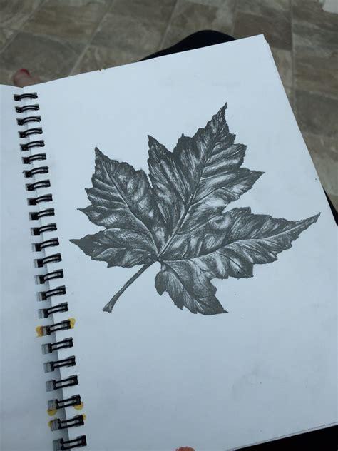 tonal drawing   leaf doodles gcse art sketchbook