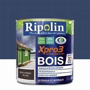 Peinture Bois Exterieur Tollens : peinture bois exterieur bleu comparer 768 offres ~ Dailycaller-alerts.com Idées de Décoration