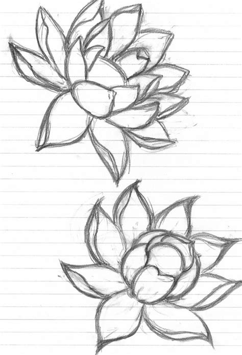 The 34 best Lotus Flower Tattoo Outline images on Pinterest | Lotus flowers, Lotus blossoms and