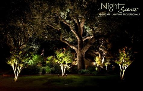 landscape lighting tropical landscape by
