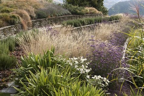 meadow hill nursery 195 best grasses images on pinterest ornamental grasses garden ideas and garden grass