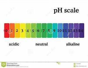 Ph Scale Diagram With Corresponding Acidic Or Alcaline
